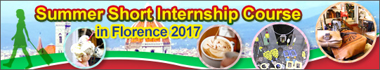 Summer Short Internship 2017