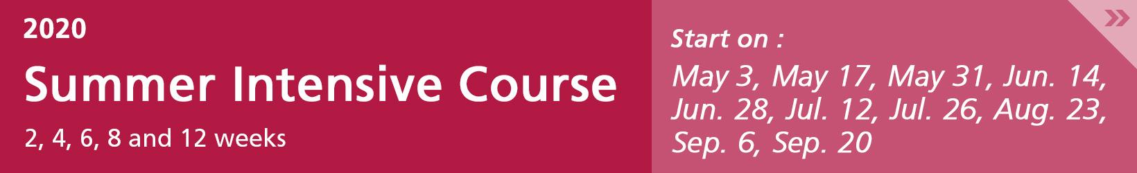 summer intensive course