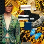 Accademia Riaci Fashion Design 0009