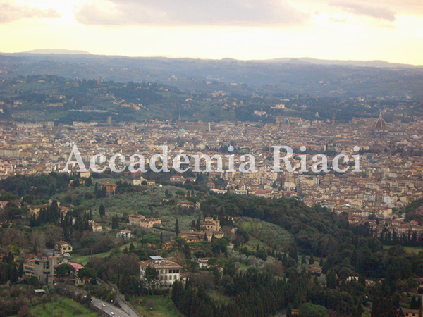 Panoramic visit01