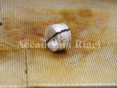 BUCCELLATI STYLE RING2