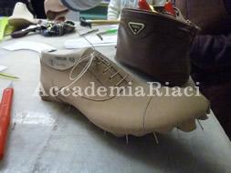 Shoe 20 Nov 2013