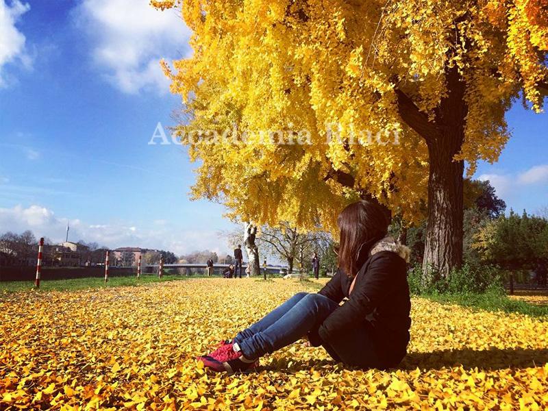 Li SHIAU-TING_20161202_10